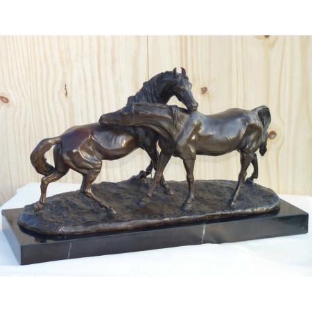 Accolade de deux chevaux