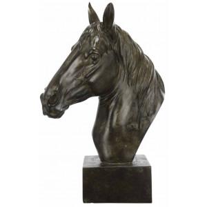 Grande tête cheval